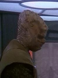 alien-lookalike-2